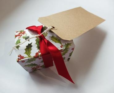 Holly box_tag small